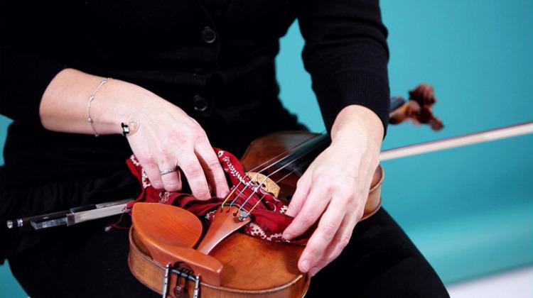 cuidados Violino