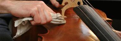 como limpar o violino